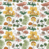 Vector  seamless pattern background with different mushrooms, plants and insects. Bright hand drawn fabric or wrap paper design Stock Images
