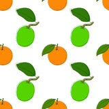 Vector seamless pattern background with hand drawn limes and oranges in vintage style. On white. Use for textile, fabric, paper, w Stock Photography