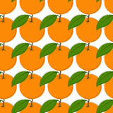 Vector seamless pattern background with hand drawn oranges in vintage style. On white. Stock Photo