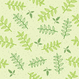 Vector seamless pattern background with leaves Royalty Free Stock Photo