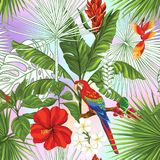 Vector seamless pattern, background with parrot and tropical plants. Seamless pattern, background with parrot and tropical plants on vanilla background. Hand stock illustration