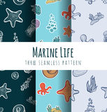Vector seamless pattern background. Underwater and Marine World. Royalty Free Stock Photos