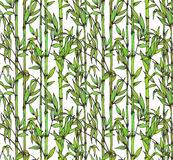 Vector seamless pattern with bamboo branches Royalty Free Stock Photography