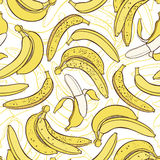 Vector seamless pattern of bananas. Stock Image