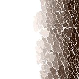 Vector seamless pattern of bark texture. Wood natural structure.  Royalty Free Stock Images