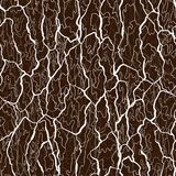 Vector seamless pattern of bark texture. Wood natural structure.  Royalty Free Stock Image