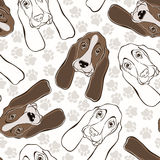 Vector seamless pattern with basset hound and traces. Royalty Free Stock Photography