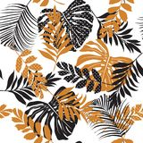 Vector seamless pattern beautiful artistic silhouette  tropical Stock Photos