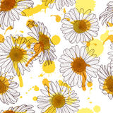 Vector seamless pattern with beautiful chamomile flower and watercolor stains. Hand drawn sketch floral illustration. Royalty Free Stock Images