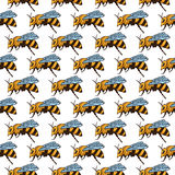 Vector seamless pattern with bees, leaves and flowers. Black and yellow texture. Vector seamless pattern with bees, leaves and flowers. Black and yellow texture vector illustration