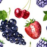 Vector seamless pattern with berries Royalty Free Stock Image