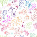 Vector seamless pattern with berries on a white background Royalty Free Stock Photos