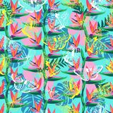 Pattern with the bird of paradise flower Strelitzia and butterflies exotic background. Vector seamless pattern with the bird of paradise flower Strelitzia and vector illustration