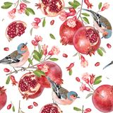 Vector seamless pattern with birds on pomegranate stock illustration