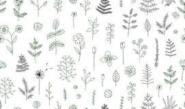 Vector seamless pattern of black and white flowers, herbs, plants. stock illustration