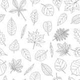 Vector seamless pattern of black and white leaves stock illustration