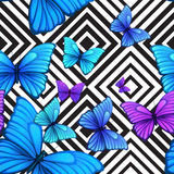 Vector seamless pattern with blue butterfly, black. And white geometric background EPS 10 Stock Photography