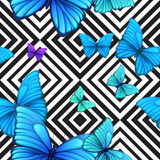 Vector seamless pattern with blue butterfly, black Royalty Free Stock Images