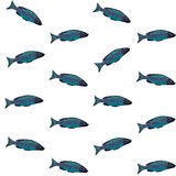 Vector seamless pattern with blue fish on white background Royalty Free Stock Photography