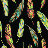 Vector seamless pattern. Bright abstract feathers Stock Photography