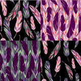 Vector seamless pattern. Bright abstract feathers. Royalty Free Stock Photo
