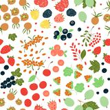 Vector seamless pattern of bright berries stock illustration