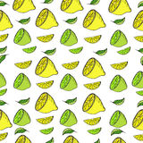 Vector seamless pattern with bright lemons and lime. Citrus seamless pattern with lemon and lime in hand-drawn style Stock Photos