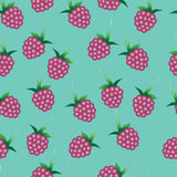 Vector seamless pattern with bright pink raspberries Royalty Free Stock Image