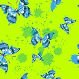 Vector seamless pattern with butterfles in green color Royalty Free Stock Photography