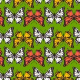 Vector seamless pattern of butterflies Stock Photos