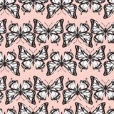 Vector seamless pattern of butterflies Royalty Free Stock Images