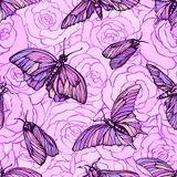 Vector seamless pattern with butterflies in soft pink colors on roses. Stylish graphic texture Stock Photography