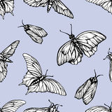 Vector seamless pattern with butterflies. Stylish graphic texture. Repeating print on pastel blue background Royalty Free Stock Photo
