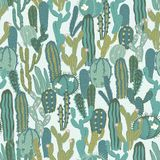 Vector seamless pattern with cactus. Repeated texture with green cacti. Stock Photos