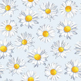 Vector seamless pattern with camomile. Beautiful flowers in pastel colors Stock Images