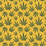 Vector seamless pattern of cannabis leaf Stock Images