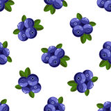 Vector seamless pattern with cartoon bilberries with green leaves isolated on a white. Cute illustration used for magazine, book, Royalty Free Stock Photos