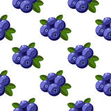 Vector seamless pattern with cartoon bilberries with green leaves isolated on a white. Texture for magazine, book, poster, card, m Royalty Free Stock Photos