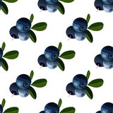 Vector seamless pattern with cartoon bilberries with green leaves  on a white background. Cute illustration used for magaz Stock Images