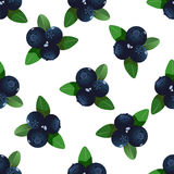 Vector seamless pattern with cartoon blueberries with green leaves isolated on a white background. Cute illustration used Stock Photo