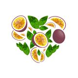 Vector seamless pattern with cartoon passion fruits isolated on white royalty free illustration
