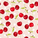 Vector seamless pattern with cherry berries Stock Images