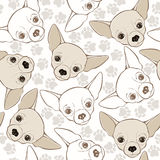 Vector seamless pattern with chihuahua-dog and traces. Royalty Free Stock Image