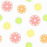 Vector seamless pattern with citruses Royalty Free Stock Photography