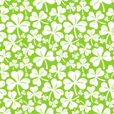 Vector seamless pattern with clover leaf Stock Photos