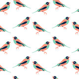 Vector seamless pattern with color birds. Vector seamless pattern texture with color birds Royalty Free Stock Photos