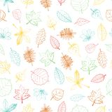 Vector seamless pattern of colored hand drawn textured leaf royalty free illustration