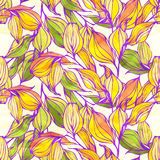 Vector seamless pattern with colored leaves Stock Photography