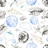 Vector seamless pattern of colored seashells. Hand drawn engraved vintage illustration. Good for wrapping paper, wallpaper, travel and fashion design Stock Image