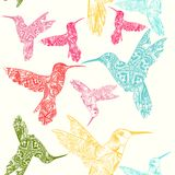Vector seamless pattern with colorful hummingbirds Stock Images
